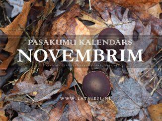 Pasākumu kalendārs novembrim