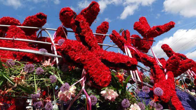 bloemencorso-laura-steinberga
