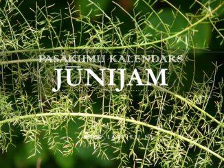 Kalendars junijam